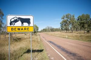 Australien 2009 Fünfzehnter Tag (c) michis0806 by Flickr.com