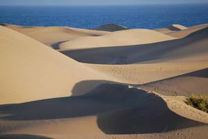 Gran Canaria Maspalomas - cc Stephan Downes / Flickr