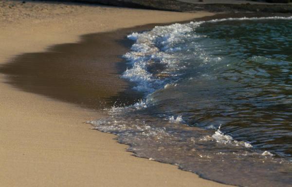 Der Strand direkt vor der Haustür cc Philipp / sydneybreeze.com
