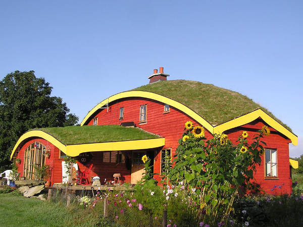 Die Farm in Irland
