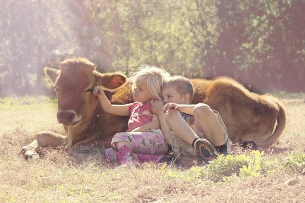 Farmleben in den USA