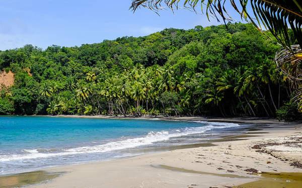 Dominica cc Matthias Ripp / Flickr
