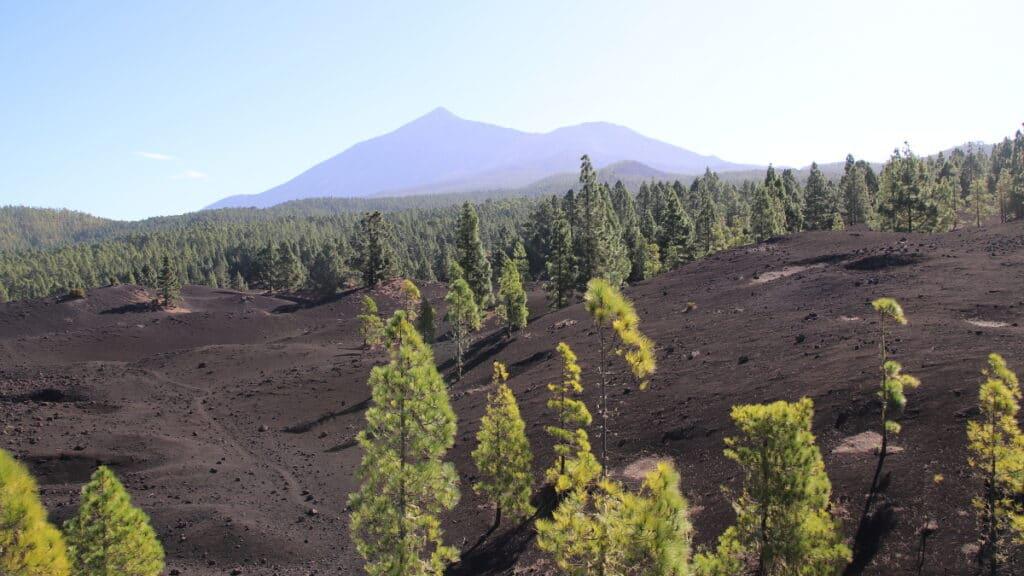 Vulkanwanderung im Norden Teneriffas
